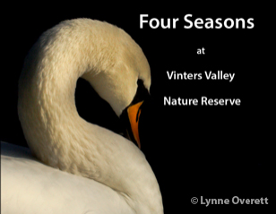 Four Seasons at Vinters Valley Nature Reserve Book Cover